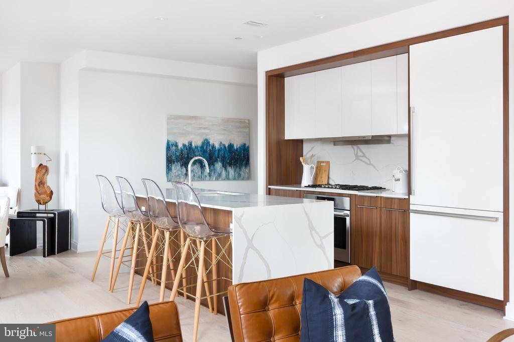 Poggenpohl kitchen cabinetry - 1427 RHODE ISLAND AVE NW #204, WASHINGTON