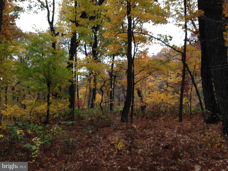 أراضي للـ Sale في Breinigsville, Pennsylvania 18031 United States