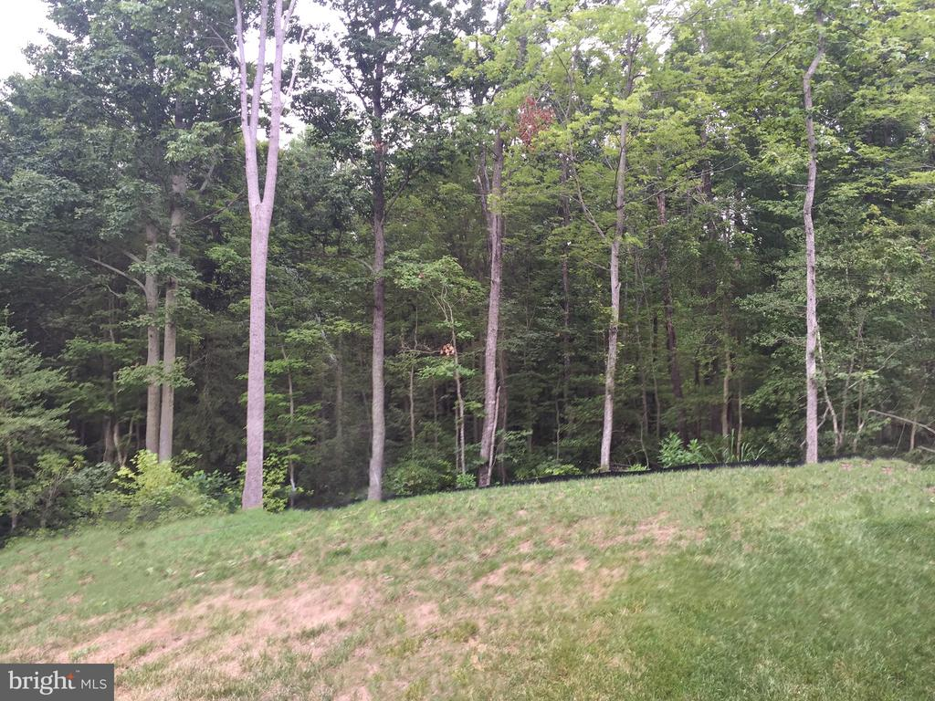 Forrest in rear of home. - 215 ROCK RAYMOND DR, STAFFORD