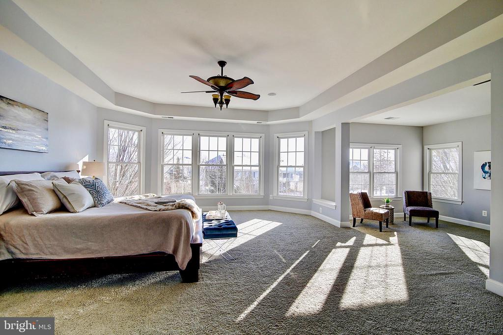 Large Master Bedroom and sitting area - 44181 RIVERPOINT DR, LEESBURG