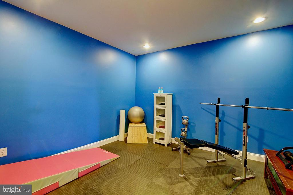 home gym - 44181 RIVERPOINT DR, LEESBURG
