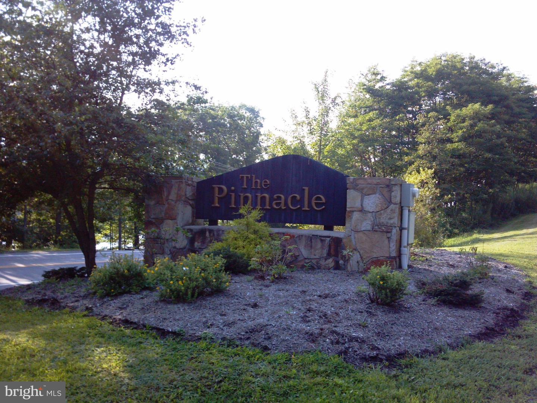 土地 為 出售 在 LOT 19 PINNACLE Drive Swanton, 馬里蘭州 21561 美國