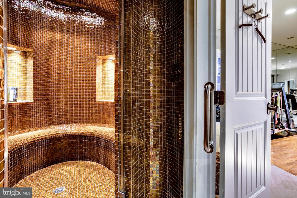 Full state of the art steam shower and spa - 11408 HIGHLAND FARM CT, POTOMAC
