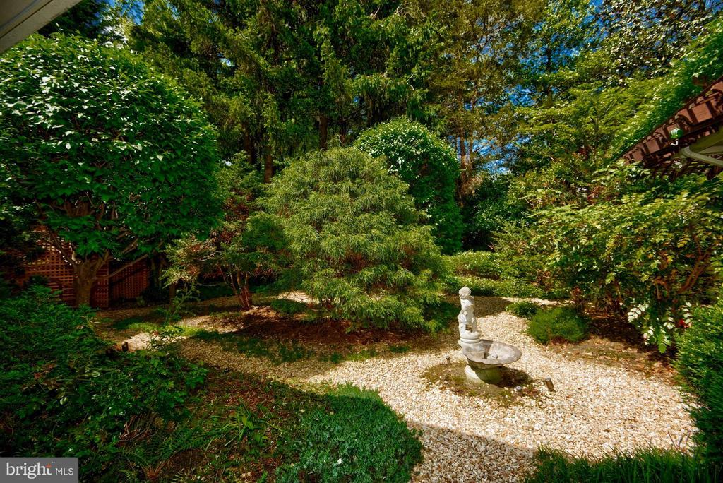 Grounds and Gardens - 6004 BROOKSIDE DR, CHEVY CHASE