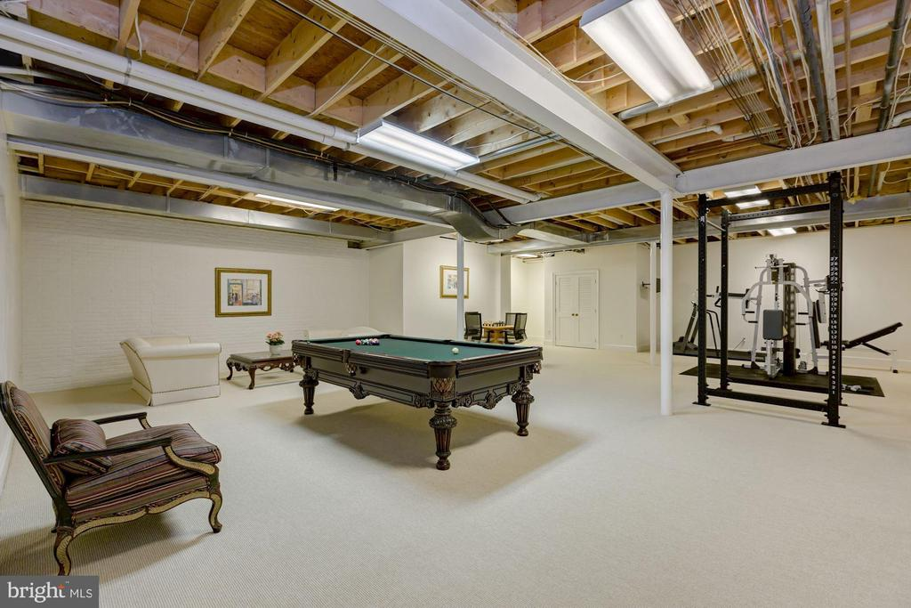 LL Recreation Room - 6004 BROOKSIDE DR, CHEVY CHASE