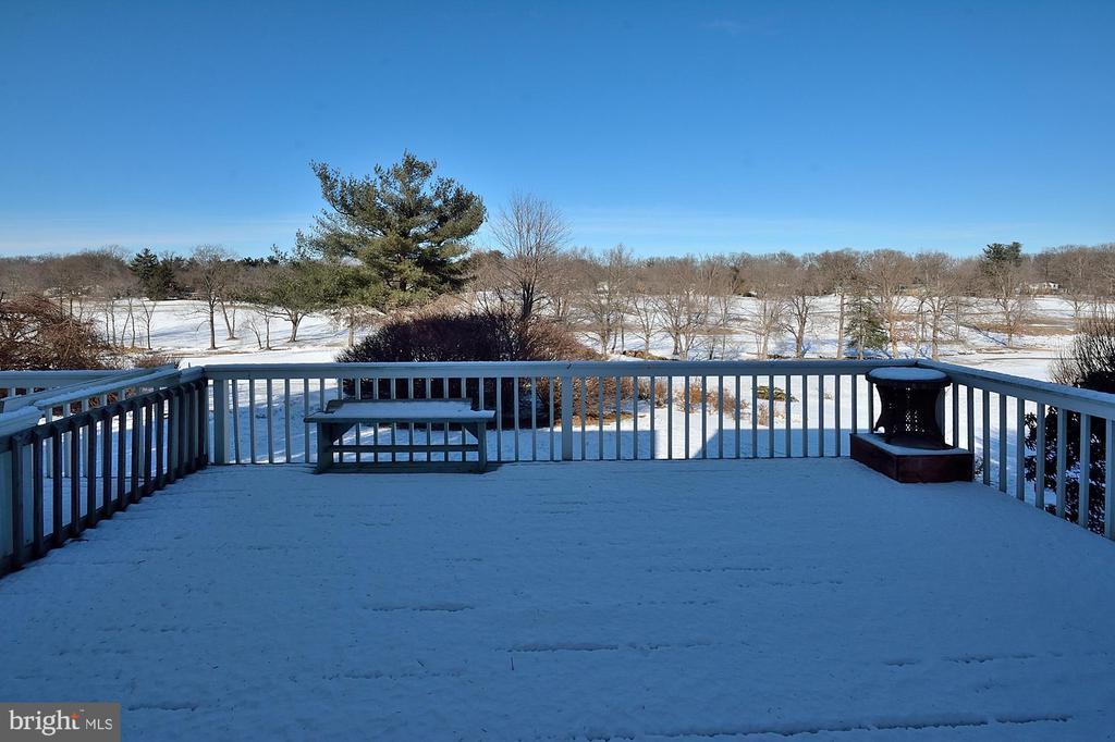 Huge Deck over looking the greens of Hidden Creek - 11312 WEDGE DR, RESTON