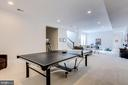 Lower level recreation room - 41621 WHITE YARROW CT, ASHBURN