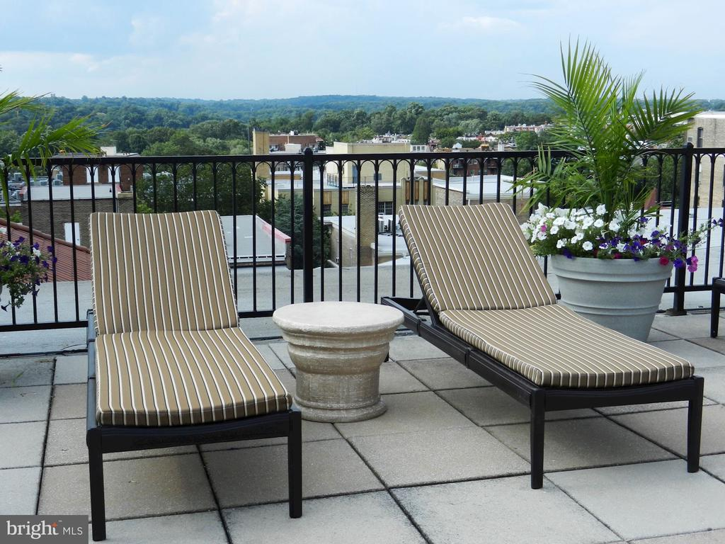 Roof deck - with high end designer furniture - 1901 WYOMING AVE NW #11, WASHINGTON