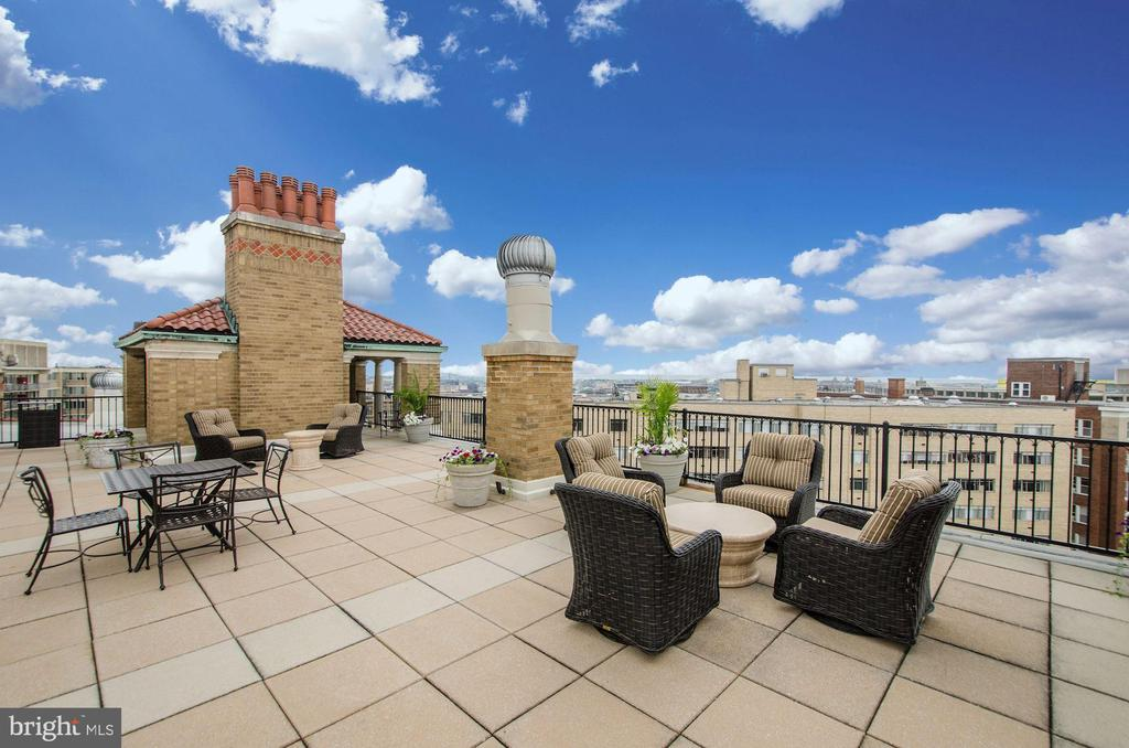 Roof deck with sweeping views - 1901 WYOMING AVE NW #11, WASHINGTON
