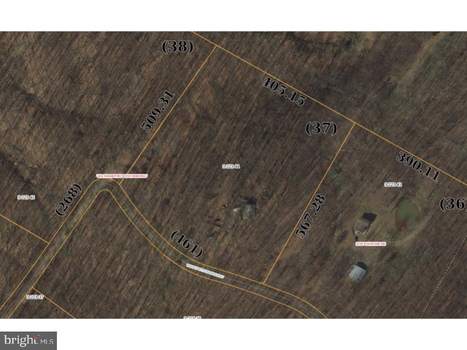 土地,用地 为 销售 在 Fisher, 西弗吉尼亚州 26818 美国