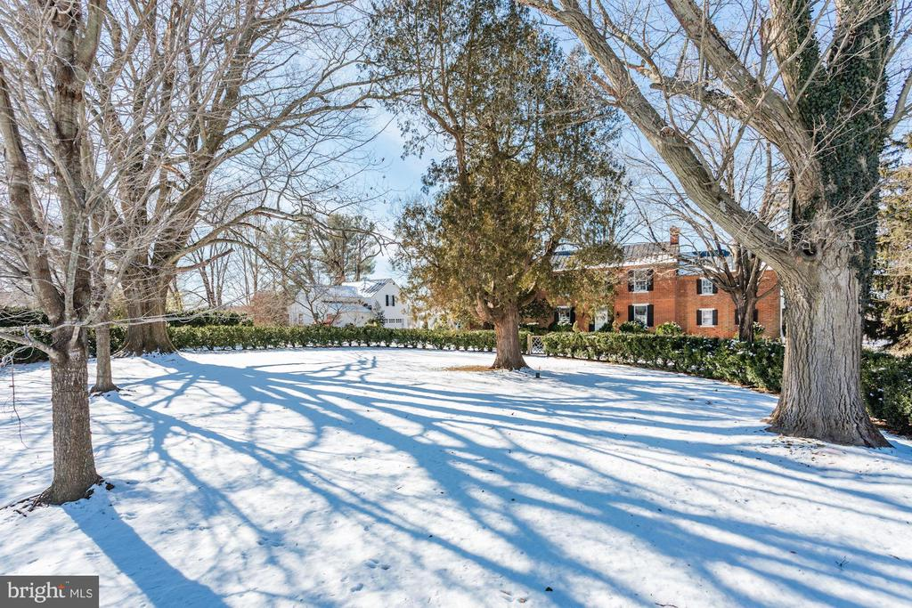 Beautiful trees and box woods - 40041 HEDGELAND LN, WATERFORD