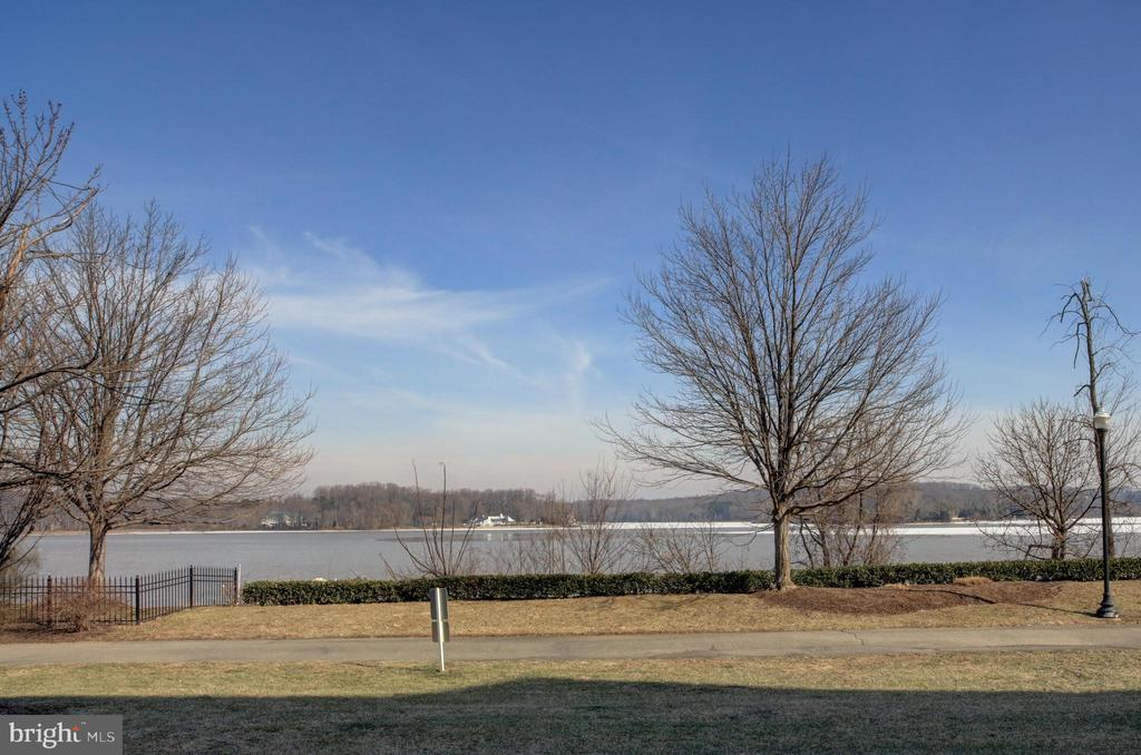 View from Living Room - 440 BELMONT BAY DR #104, WOODBRIDGE