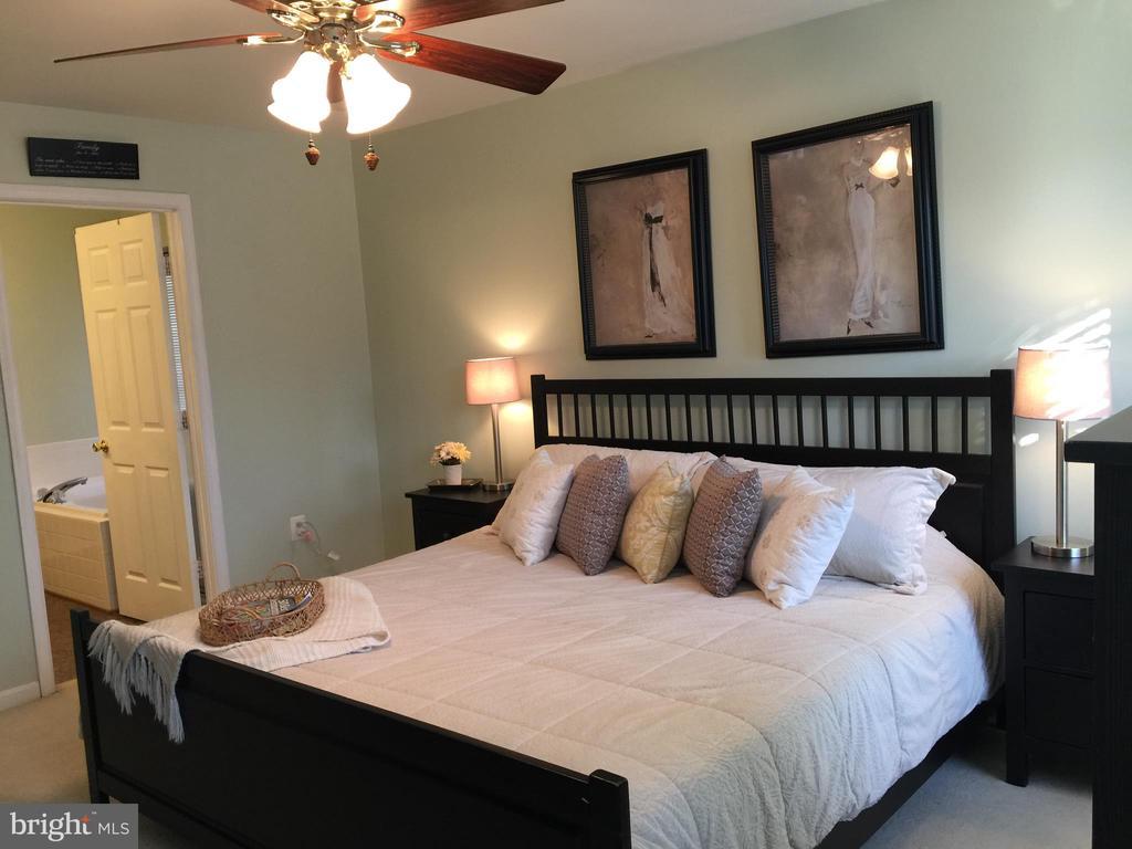 Ensuite attached to Master Bedroom. Custom Paint. - 5602 ASSATEAGUE PL, MANASSAS