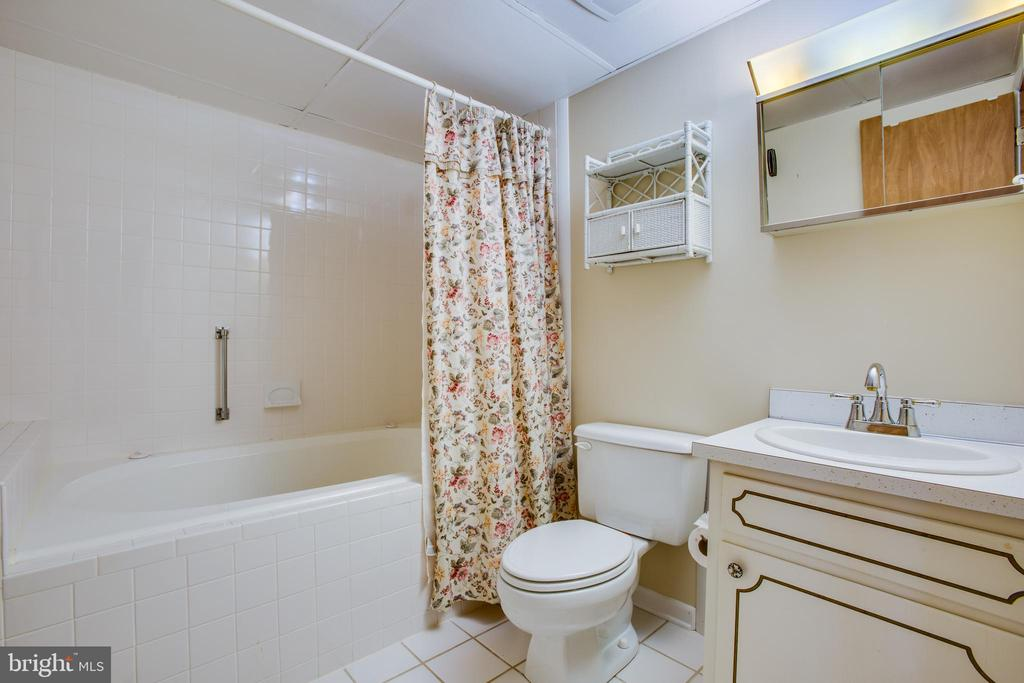 Full Bath on the Lower Level. - 232 BIRCHSIDE CIR, LOCUST GROVE