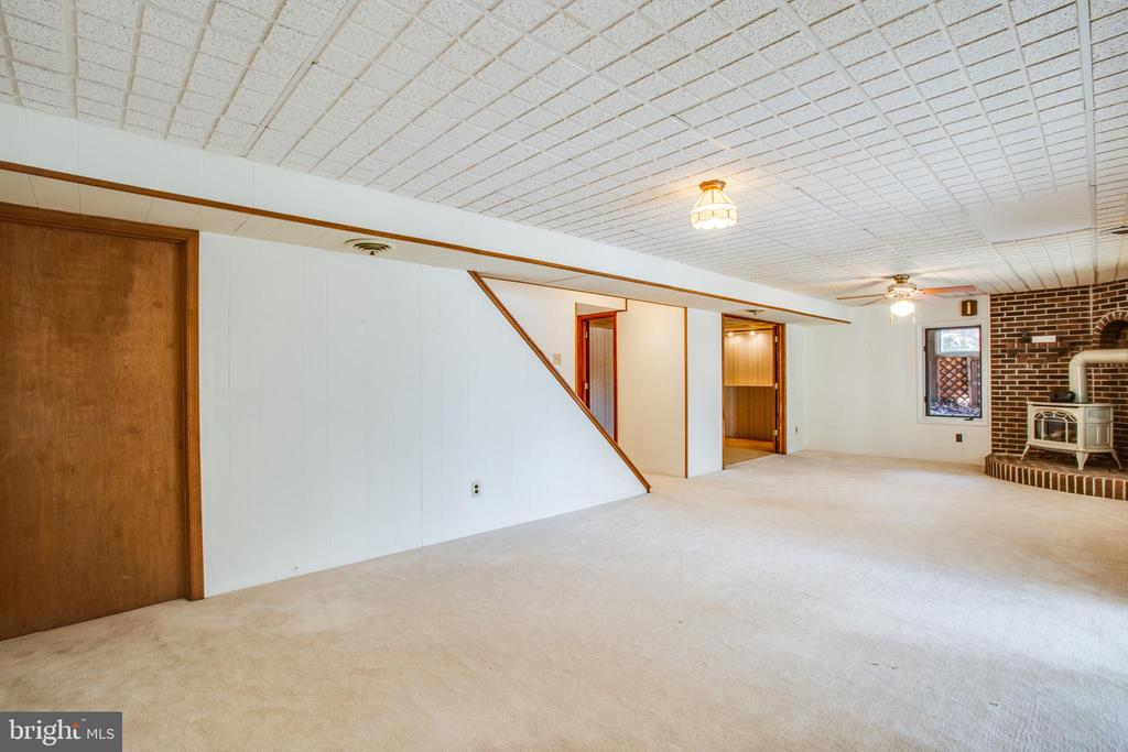 Lower Level Family Room. - 232 BIRCHSIDE CIR, LOCUST GROVE