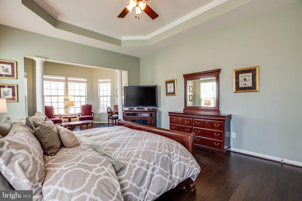 Tray ceiling and amazing and picture perfect views - 98 GENEVIEVE CT, FREDERICKSBURG