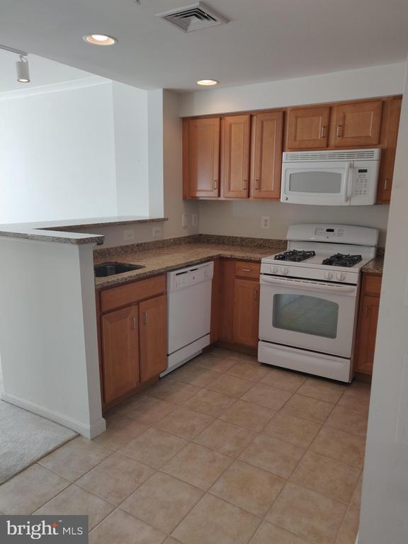 Granite and Stainless Kitchen - 4480 MARKET COMMONS DR #613, FAIRFAX
