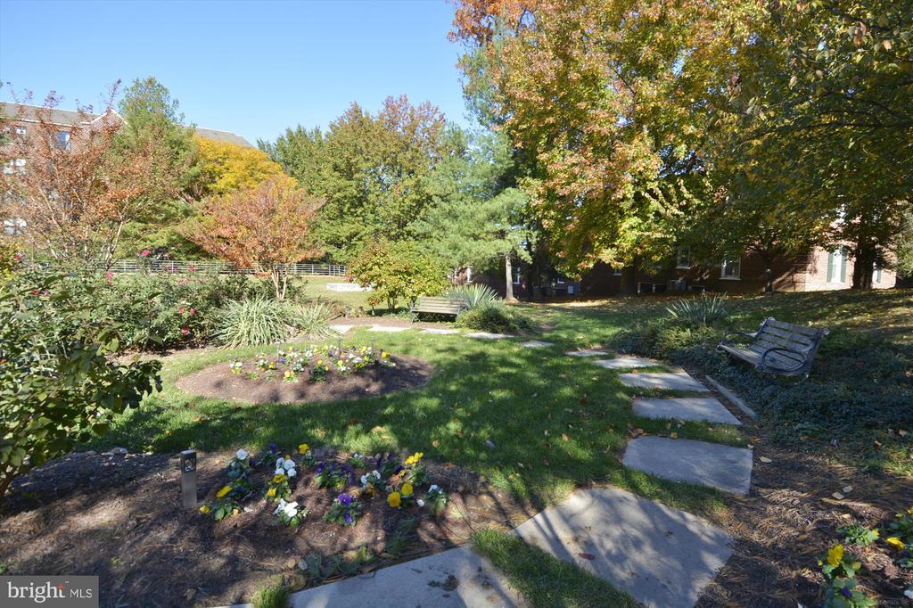 Garden at the Astoria - 2100 LEE HWY #114, ARLINGTON
