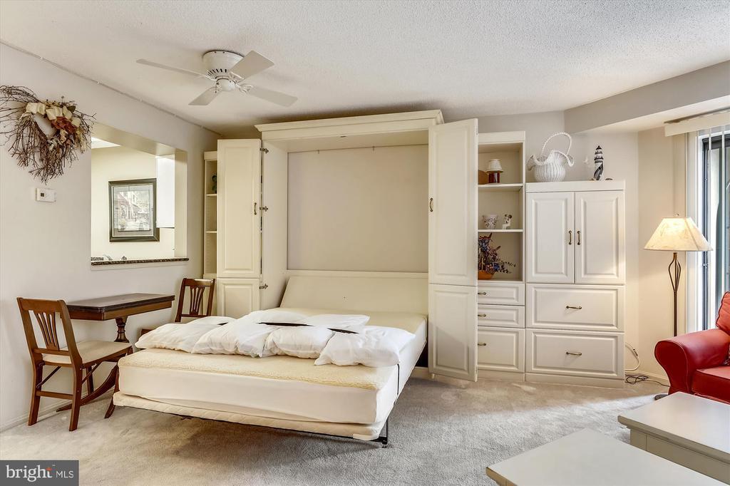 Murphy bed (conveys!) hidden in cabinetry - 2100 LEE HWY #114, ARLINGTON