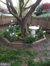 Landscaped with wood fence w pet portals/windows - 3719 HILL ST, FAIRFAX
