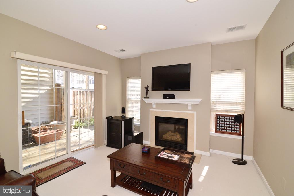 Finished basement with walkout to patio and gas FP - 12171 TRYTON WAY, RESTON