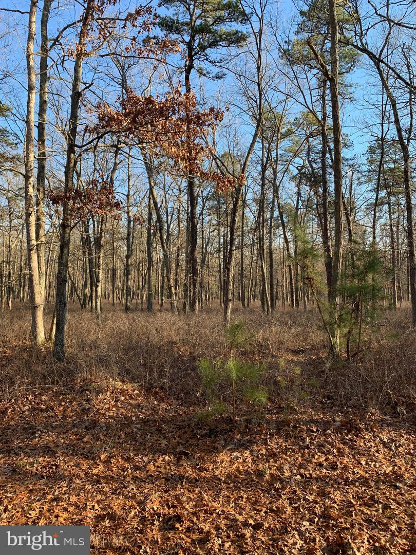 Land for Sale at Estell Manor, New Jersey 08319 United States