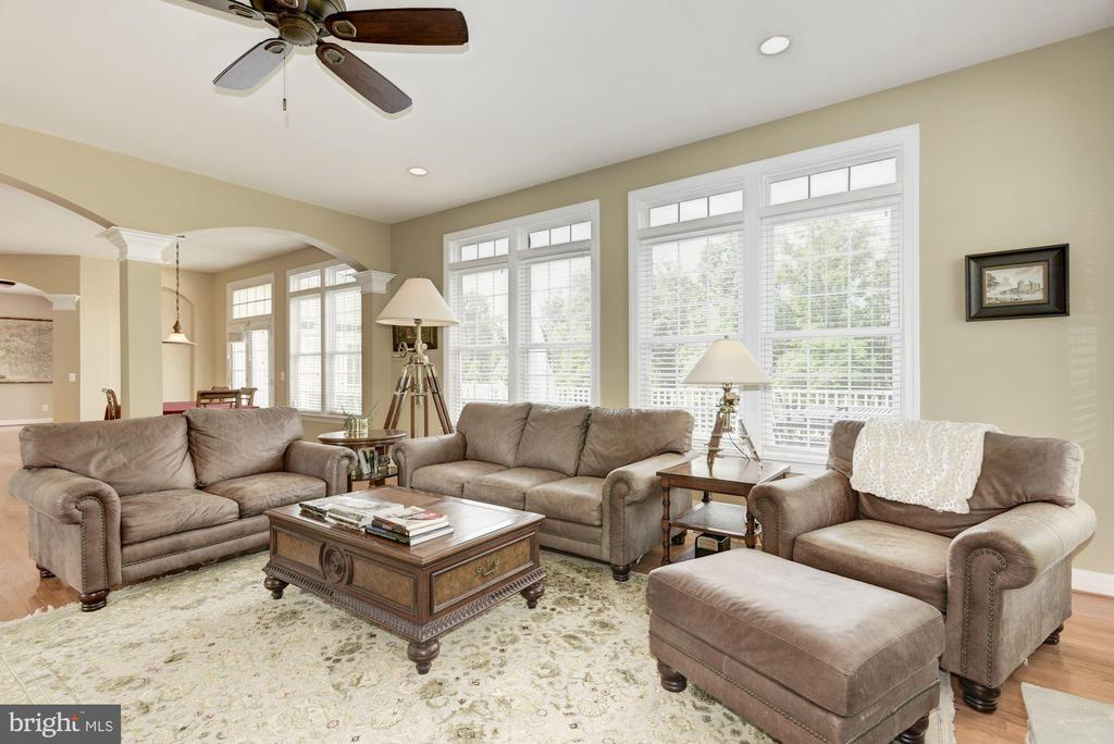 Family Room - 43896 RIVERPOINT DR, LEESBURG