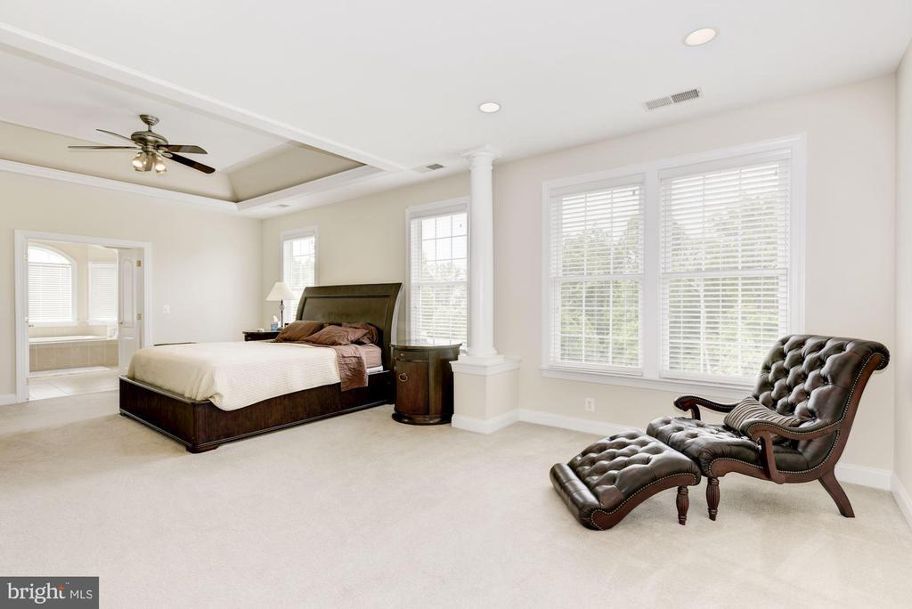 Master Bedroom - 43896 RIVERPOINT DR, LEESBURG