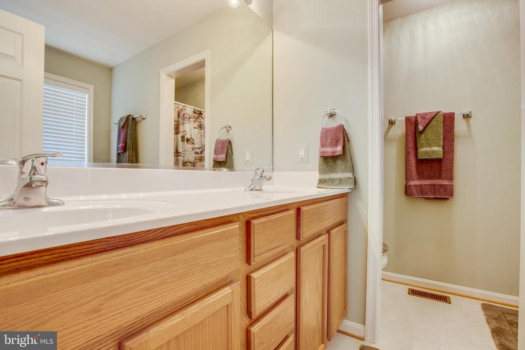 Master bath - 8430 SWAN WOODS RD, RHOADESVILLE
