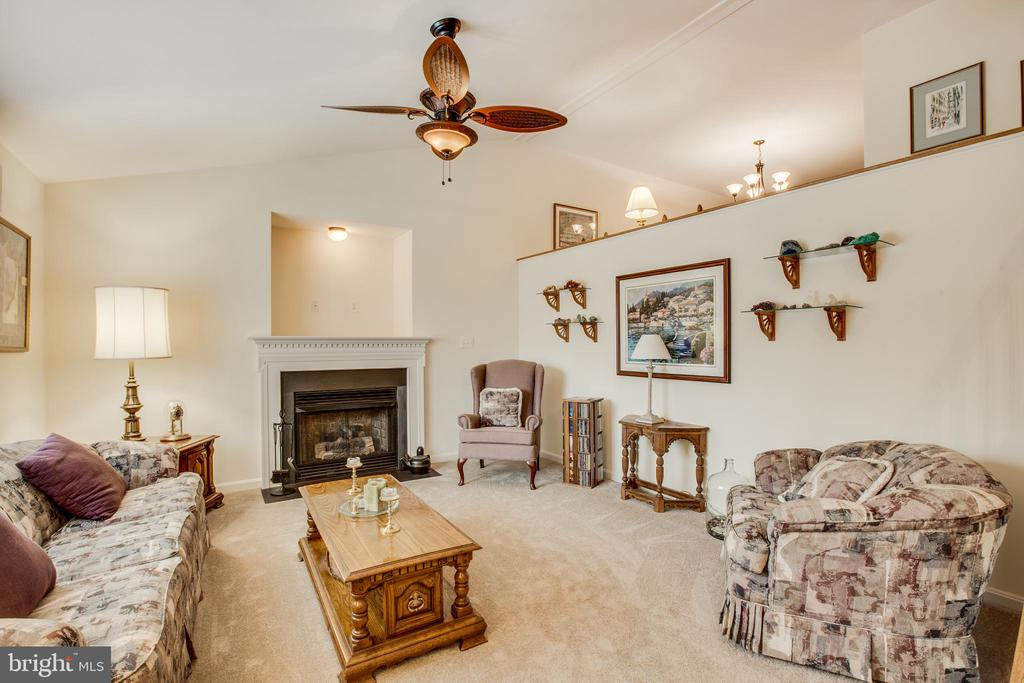 Living room with fireplace - 8430 SWAN WOODS RD, RHOADESVILLE