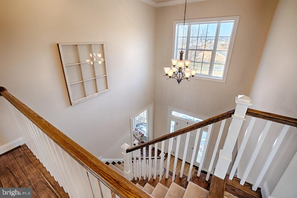Foyer Two Story Entrance. - 39859 CHARLES HENRY PL, WATERFORD