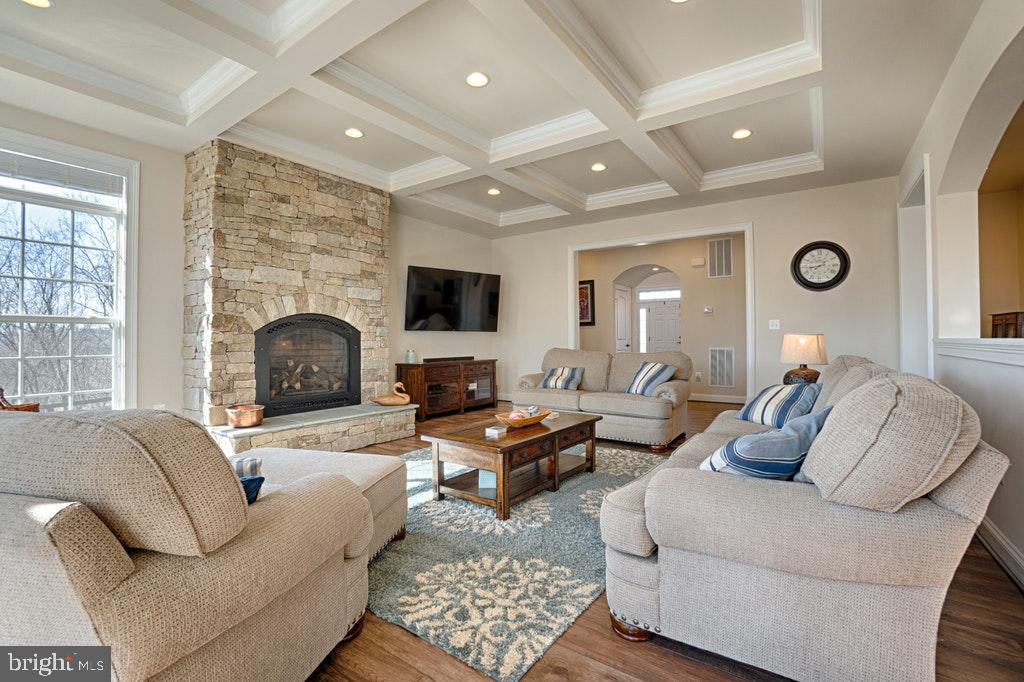 Family room with stone fireplace. - 39859 CHARLES HENRY PL, WATERFORD