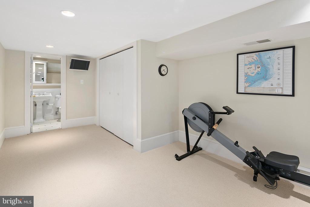 Lower level bonus room - 1714 N CALVERT ST, ARLINGTON