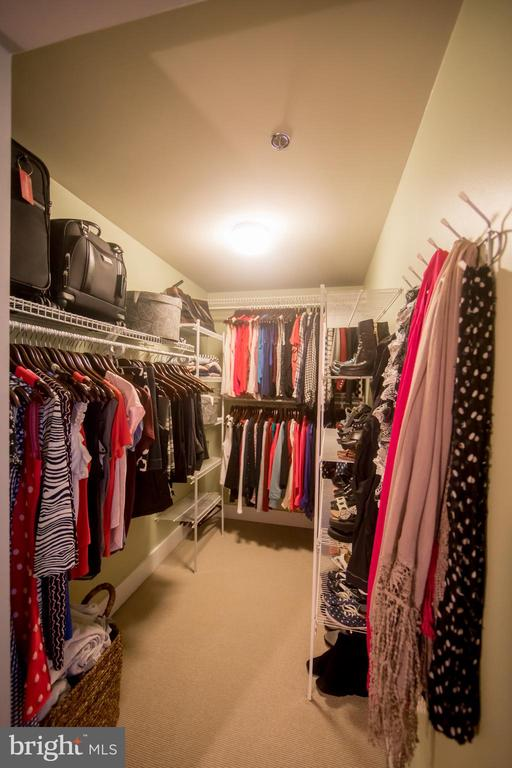 Closet - 520 JOHN CARLYLE ST #106, ALEXANDRIA