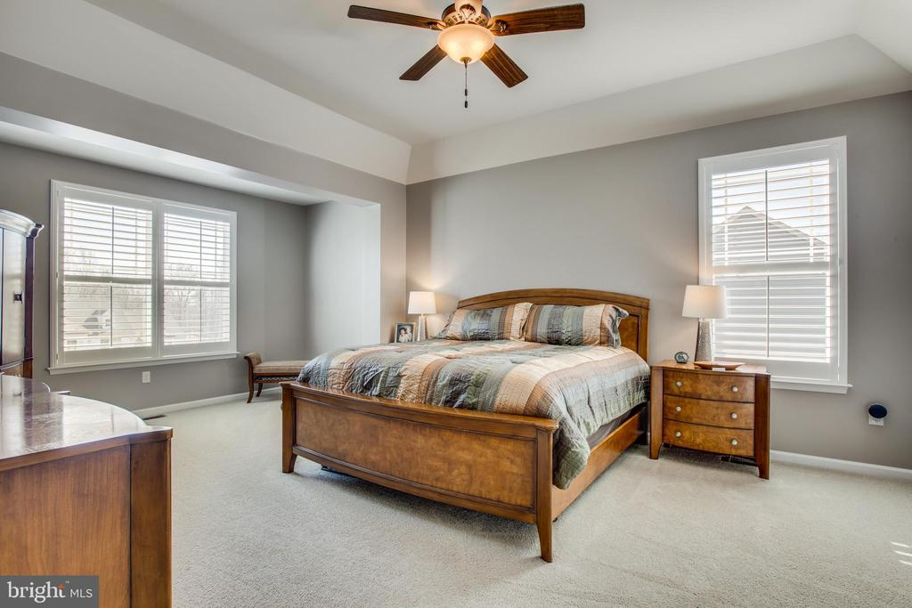 Welcome to the master suite with tray ceiling. - 215 ROCK RAYMOND DR, STAFFORD
