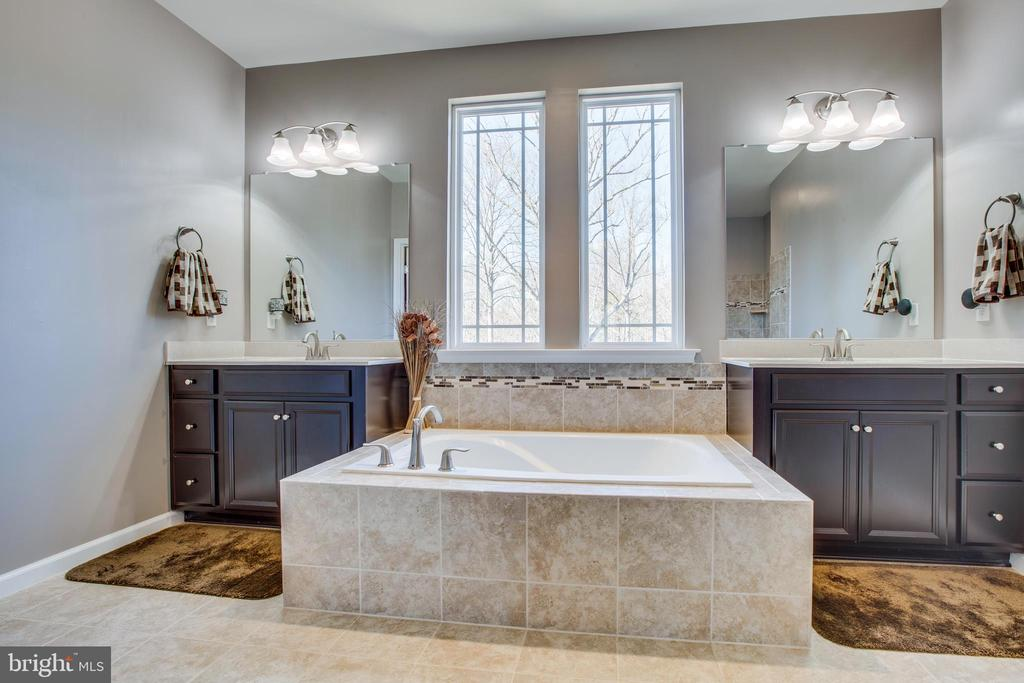 This is a WOW master bath! - 215 ROCK RAYMOND DR, STAFFORD