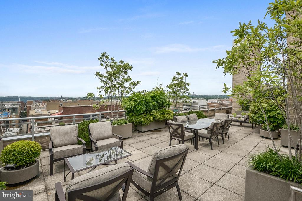 SPECTACULAR ROOF TERRACE - 1155 23RD ST NW #PH3E, WASHINGTON