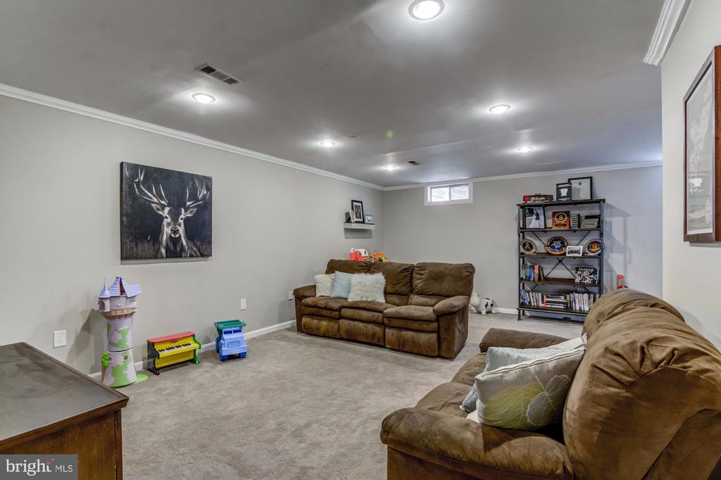 Lower Level Rec Room - 5 TABER CT, STAFFORD