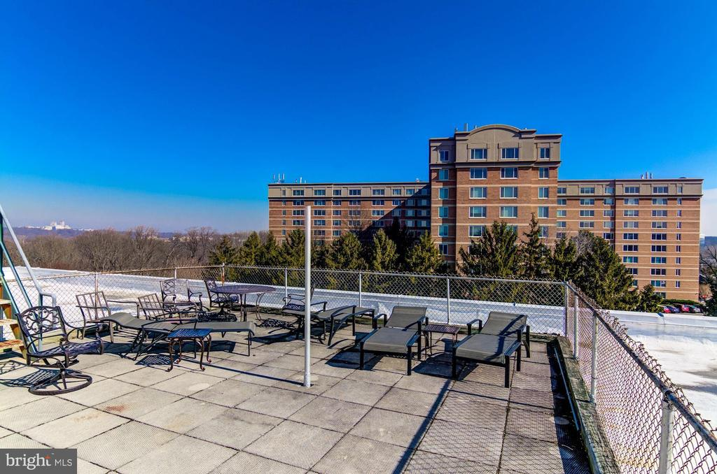 Community rooftop - 2016 N ADAMS ST #504, ARLINGTON