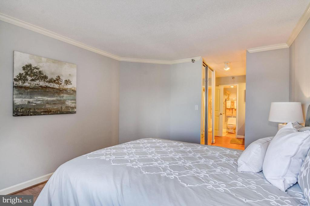 Spacious master suite - 900 N STAFFORD ST #1711, ARLINGTON