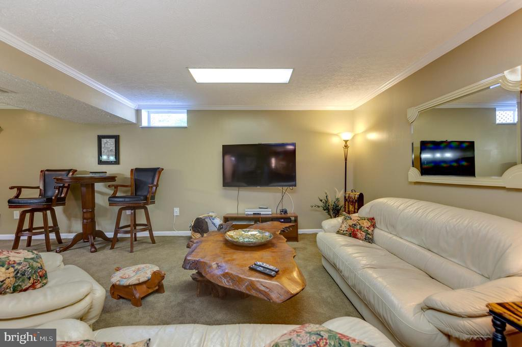 Lower Level Family Room - 8651 WIND SONG CT, SPRINGFIELD