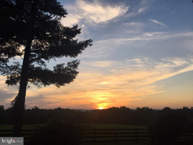 Your future sunsets await. - 40041 HEDGELAND LN, WATERFORD