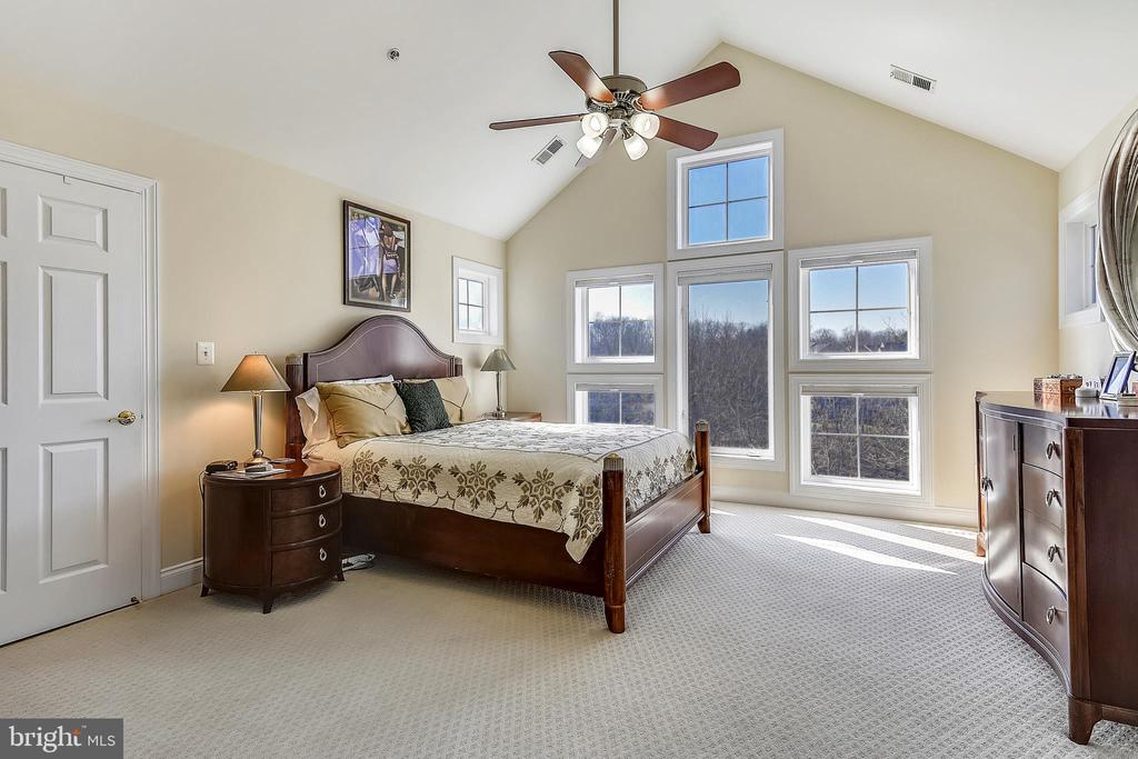 Master Bedroom-Walk in Closets- Lake Views - 2052 BEACON HEIGHTS DR, RESTON