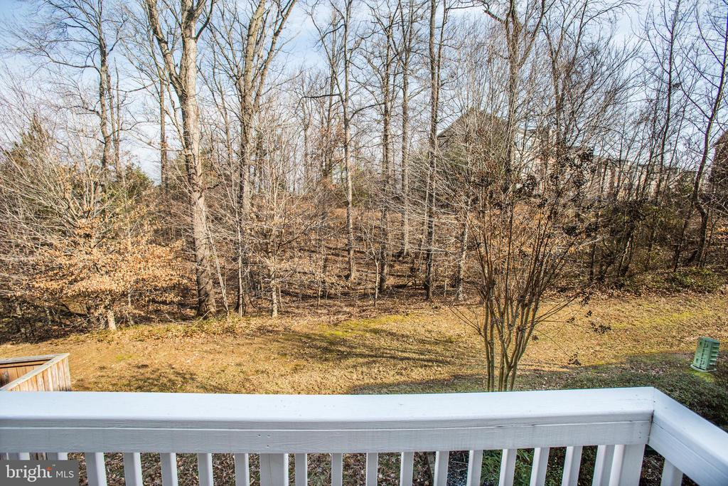 Imagine this wooded view in the spring and summer - 9603 MASEY MCQUIRE CT, LORTON