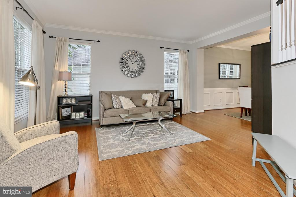 Living Room - 43228 DARKWOODS ST, CHANTILLY