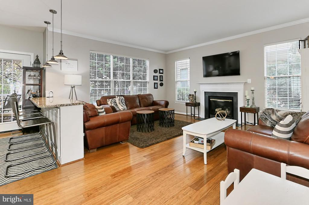 Family Room - 43228 DARKWOODS ST, CHANTILLY