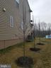 Landscaped side yard. - 215 ROCK RAYMOND DR, STAFFORD