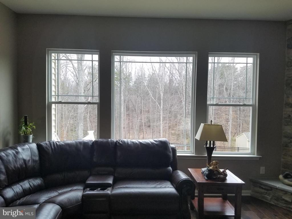 Imagine this view  from kitchen and  family room. - 215 ROCK RAYMOND DR, STAFFORD