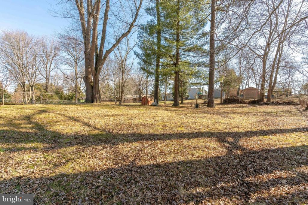 Large Lot with Mature Trees - 5209 CEDAR RD, ALEXANDRIA