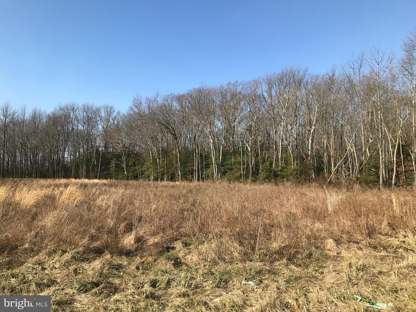 Land for Sale at Newport, New Jersey 08345 United States